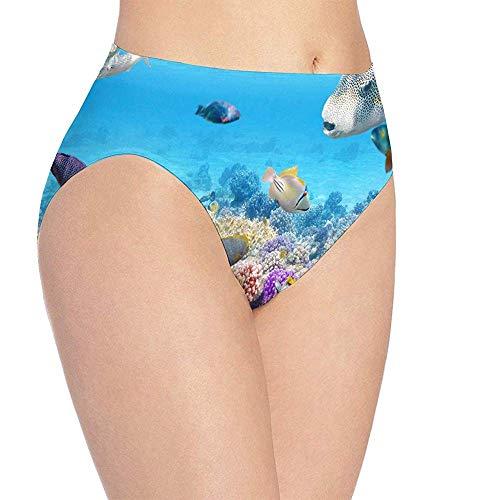 Ropa interior para mujer World MAPS HD Bragas de bikini de secado rápido con estampado especial Bragas hipster, M