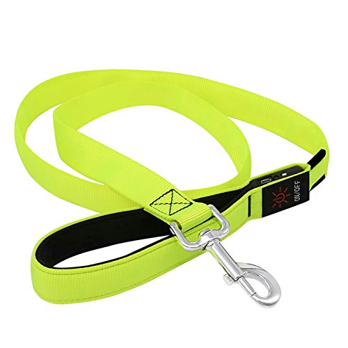 BSEEN LED Lighted Dog Leash - USB Rechargeable Nylon Webbing Glowing Pet Leash, Light Up Puppy Lead for Nighttime Dog Walking (47 Inch (120cm), Neon Green)