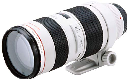 Canon EF 70-200mm f/2.8L USM - Objetivo para Canon (Distancia Focal 70-200mm, Apertura f/2.8-32, Zoom óptico 2.8X,diámetro: 77mm) Blanco