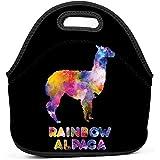 Ikon-Eei Unico arcobaleno Cammello Stampa Riutilizzabile Borse da pranzo multifunzione portatili/Borsa da picnic con cerniera e manico