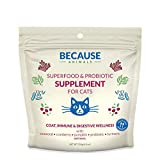 Human Probiotics For Cats - Best Reviews Guide