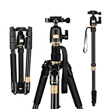 AFAITH Tripod for DSLR Camera, Ultra Compact and Lightweight...