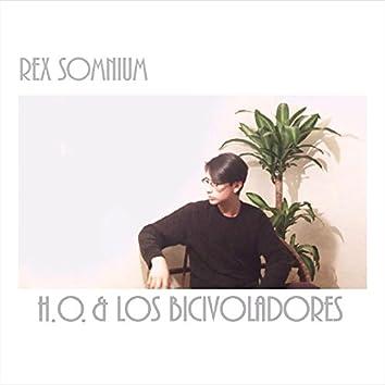 Rex Somnium