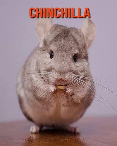 Chinchilla: Libro para niños con imágenes asombrosas y datos curiosos sobre los Chinchilla