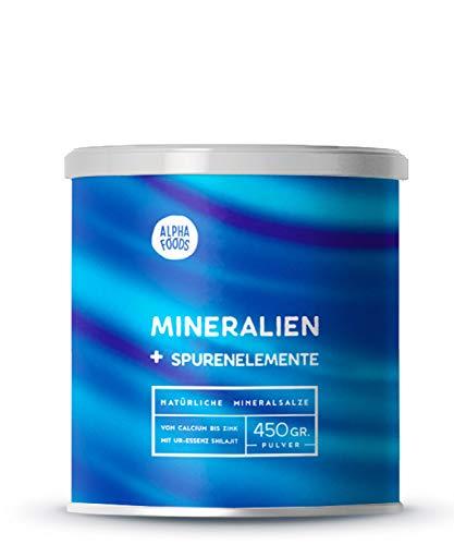 Mineralien und Spurenelemente | Komplettversorgung | Mit Ur-Essenz Shilajit | 100% frei von Zusatz- und Hilfsstoffen | Maximal bioverfügbare Mischung an Mineralsalzen | 450g Pulver