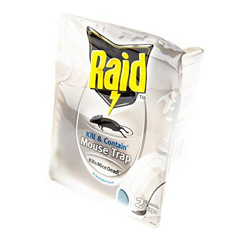 10 Best Raid Mouse Traps