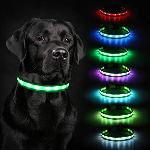 Led Dog Collar Lights, HAOPINSH 2020 Newest Led Dog Collar Rechargeable Led Lighted Up Dog Collar Night Safety Collar for Small Medium Large Dogs USB Charger 8 Changing (X-Large)