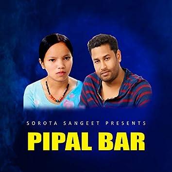 Pipal Bar
