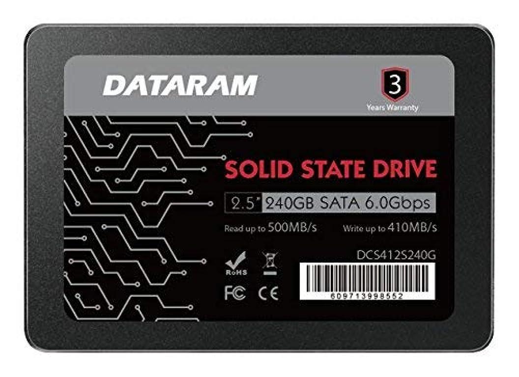 バッフル概要有彩色のDATARAM 240GB 2.5
