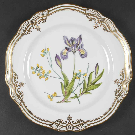 Stafford Flowers (Bone) Dinner Plate by Spode | Replacements, Ltd.