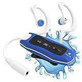 NGS Seaweed - Reproductor MP3