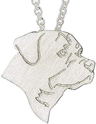 DUEJJH Co.,ltd Collar clásico para Hombres y Mujeres, Collar con dijes, joyería, Collar de Cadena de Perro de Moda, Collar con Colgante para Mascotas, Regalo conmemorativo