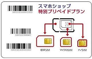 キャリア データ通信SIM prepaid DATA SIM (20GBプラン, 12ヶ月,SIMのみ)