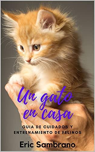 Rascador Para Gato Pequeño  marca