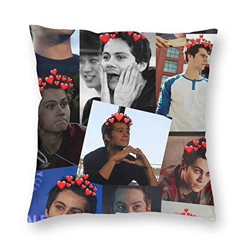 maichengxuan Dylan O'Brien - Funda de almohada decorativa de 45,7 x 45,7 cm, diseño cuadrado, sin almohada de 45,7 x 45,7 cm