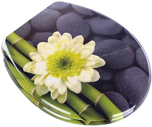 Antideslizante tapa del inodoro, duradero asiento del inodoro, suave Cierre WC Tapa, de uso general, acero inoxidable y resina de material, de liberación rápida, fácil de instalar . ( Color : C )