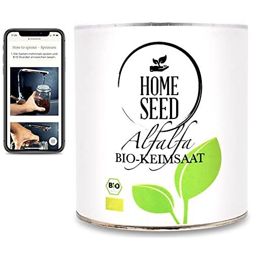 Homeseed Alfalfa [500g] 100% Bio Sprossensamen Keimsprossen Microgreens + Anleitung zum Sprossen ziehen (500)