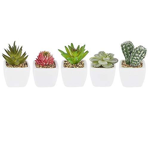 Ideen mit Herz Deko-Sukkulenten-Set | 5 Stück | künstliche Kakteen-Pflanzen im Echt-Look | ideale Deko für Büro, Fensterbank, Wohnzimmer, Schlafzimmer, UVM. (weißer Blumentopf | 6,5 bis 9 cm hoch)