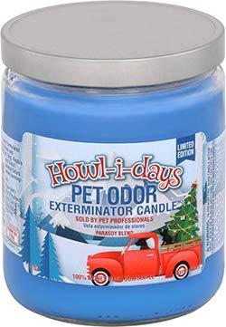 Pet Odor Exterminator Candle 13oz jar, Howl-I-Days Holiday Edition