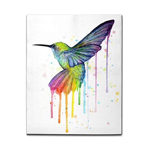Joinfine Hummingbird of Watercolor Rainbow Canvas Wall Art Prints, Framed Picture Photo Painting Artwork, Modern Gallery Home Decor Ready to Hang, 12'x16'
