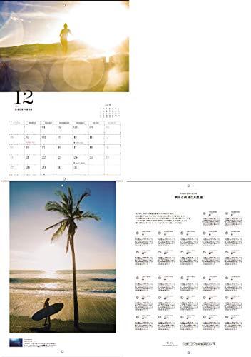 HONEY Vol.23 商品画像