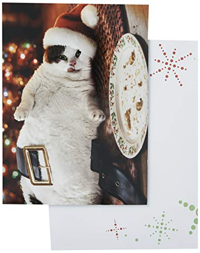 Avanti Press Christmas Cards, Fat Cat & Cookie Crumbs, Count of 10 (701340)