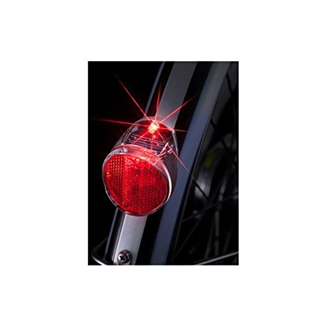 あごしょっぱい引っ張るBRIDGESTONE(ブリヂストン) ソーラーテールランプ SLR100N F700040DGC SLR100N