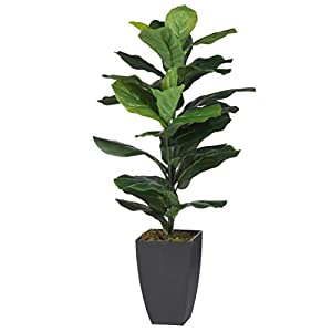 A&B Home Artificial Potted Fiddle-Leaf Fig Plant, Green