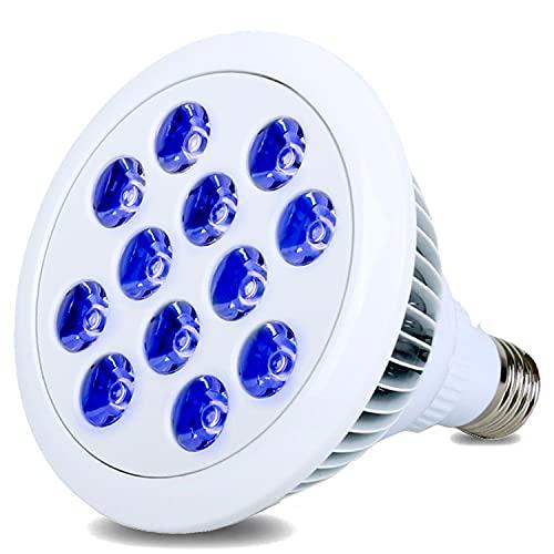 hajimeb LED アクアリウム ライト 珊瑚 水草 植物 水槽 熱帯魚 E26 口金 12×14cm 24W 12 球 青