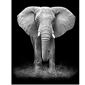 Jigsaw Puzzle 1000 Piece for Adults Puzzle 3D Wooden Classic Puzzle Black and White Elephants Animal DIY Collectibles Modern Home Decoration 75X50Cm