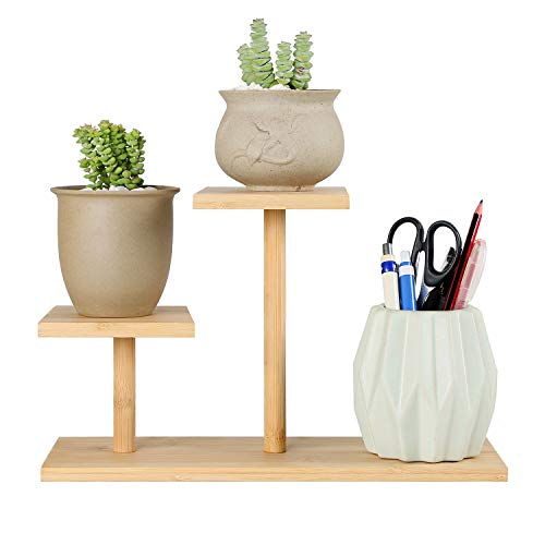Joiishom Bamboo Succulent Plant Stand, Tabletop Plant Stand, 2 Tier Mini Desktop Plant Stand for Office Desk Home Decorative
