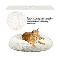 スーパーソフトドッグベッドラウンドウォッシャブルロングぬいぐるみ犬犬犬用猫ハウスベルベットマットソファ犬用犬バスケットペットベッド-creamy-white-40cm
