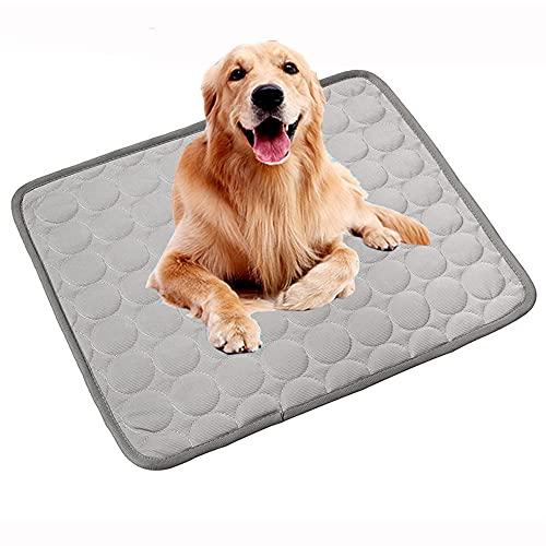 Alfombrilla de refrigeración para perro, lavable, duradera, cómoda para perros pequeños, gatos, ideal para casas, perreras, coches, camas (M:60 x 50 cm, gris)