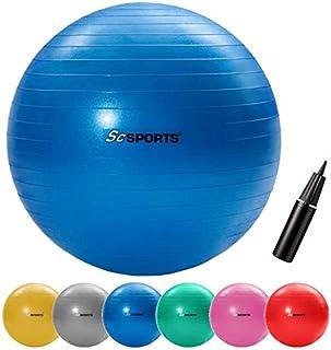 HMS Gymnastikball Sitzball Fitnessball Yogaball Balanceball Ball mit Pumpe 55cm YB03