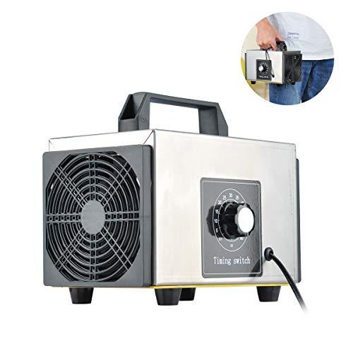 Lychee Generador de ozono Comercial Profesional,10,000mg/h 220V Purifi