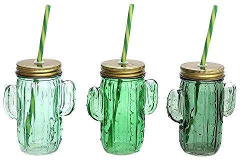 Cactus en verre Vert à boire Bocal avec couvercle Screwtop et paille ~ Couleur varier