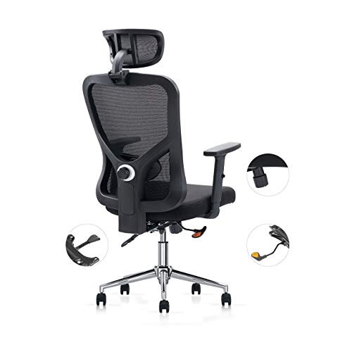 Cedric Office Chair, Breathable Mesh Computer Chair with Ergonomic Adjustable Lumbar Support, Black...