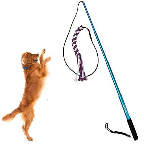Sanzang Hundespielzeug, ausziehbar Länge, auch als Trainingsgerät geeignet, groß, Blau, in verschiendenen Größen und Farben erhältlich