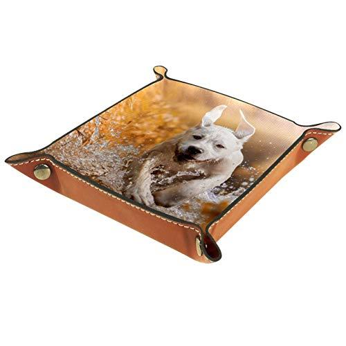 TIZORAX Running Dog On River Caja de Almacenamiento de Cuero Valet Tray...