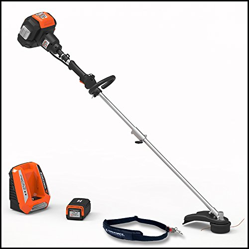 """YARD FORCE YOLTX18TB00 120V 2.5Ah Lithium-Ion 18"""" Line Trimmer with Push-Button Speed Control, One Size, Black/Silver/Orange"""