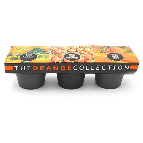 Saatset Anzuchtsset Keramik oranges Gemüse Paprika Karotten Tomaten Pflanzen 3 er Keramiktöpfchen