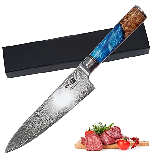 Dnifo Professional Sharp Kitchen Chef Knife 8 Inch, Damascus Steel Japanese Kitchen Knives Full Tang Half Bolster Cooking Damascus Knife, Non-stick Blade and Anti-rusting Forged Cutlery Knife