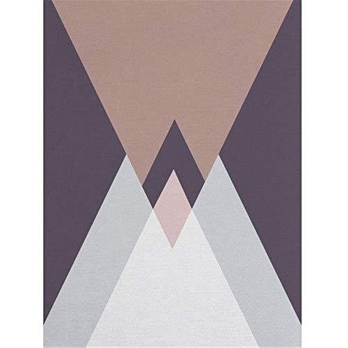 WQ-BBB Super Suave jarapas Diseño geométrico de Color de Costura Grande alfombras Pasillo Gris Violeta marrón Rosa Pelo Corto el Juego Sala La Alfombrers 80X120cm