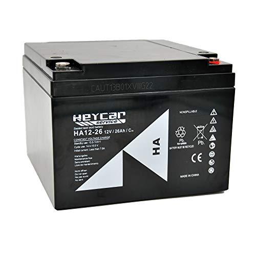 HEYCAR - Batería de Plomo AGM para aplicaciones estacionarias. 12V / 26Ah. Capacidad de descarga 360 A 7,5 Kg. 166 x 175 x 125 mm