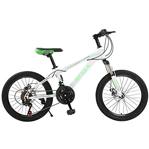 Axdwfd Kids Bike 20 Inch Kids Bike with Training Wheels, Child Bike with 95% Assembled, Red, Blue, Black Bicycle (Color : Green)
