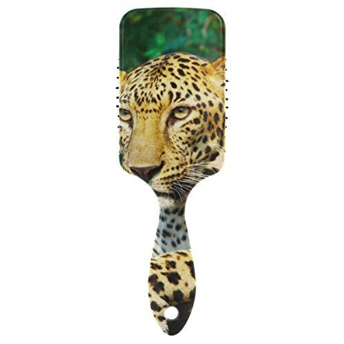 Lupinz Brosse à cheveux Motif léopard dans la forêt Pro Palette Coussin d'air Peignes pour améliorer la circulation du sang du cerveau sans statistiques