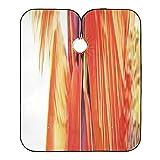Capas de corte de pelo para adultos Flor nativa Flora Cuba Cayo Largo Nature Capa de corte de pelo elegante y ligera Capa de corte de pelo para niños Cierre de broche con 2 ventosas 55x65 pulgadas