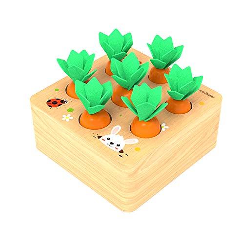 Felly Holzspielzeug ab 1Jahr Baby Motorik Spielzeug für 12 Monate Montessori Sortierspiel Holzpuzzle Karottenernte Lernspielzeug für Kinder als Geburtztag Geschenk 1 2 3 Jahr Jungen und Mädchen
