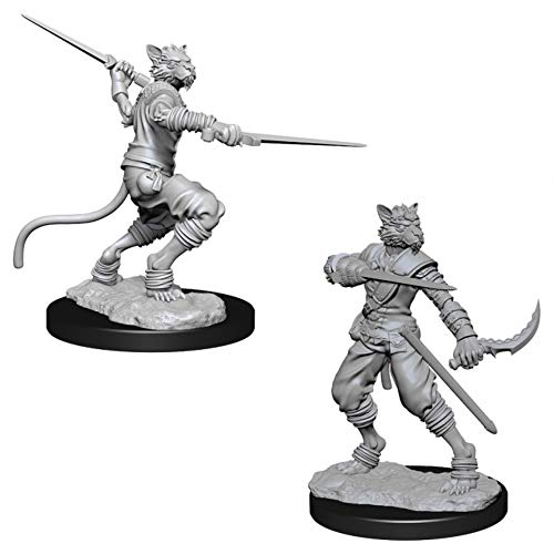 Dungeons & Dragons: Nolzur's Marvelous Unpainted Minis: Male Tabaxi Rogue