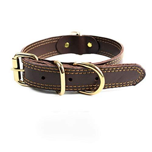 BAIZAN Cuello De Mascotas De PU De Prueba De Masticación, Collar De Perro De Hebilla De Metal Durable De Acero D,2,M